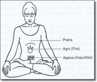 Kriya Yoga – Pranayama Techniques « Yoga in Daily Life